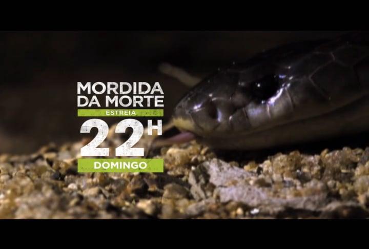 Mordida Mortal